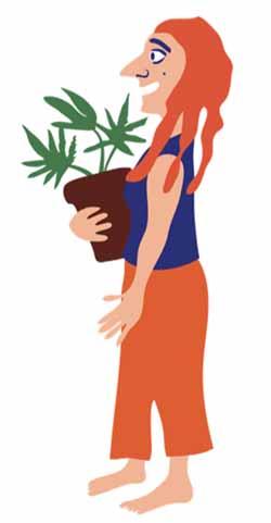 אישה-מחזיקה-עציץ-קנאביס איור: דותן מורנו